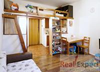 Prodej bytu 1+kk, 26m2, Praha 3 - Žižkov, ul. V Domově